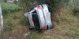Auto wypadło z drogi, dachowało i wylądowało na boku. Wszystko przez... muchę