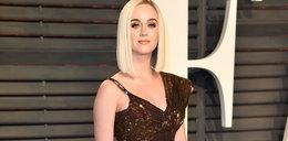 Polak zagrażał Katy Perry?! Paweł J. w rękach policji