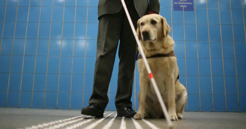Specjalna aplikacja ma odczytywać komunikaty osobom niewidomym i niedowidzącym