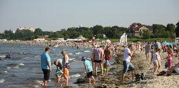 Ohyda na plaży w Sopocie!