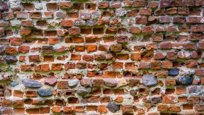 Fragment starego muru zamkowego (zdjęcie ilustracyjne)