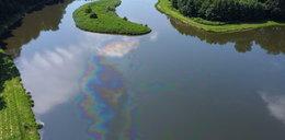 Katastrofa ekologiczna pod Łodzią. Tony ropy w rzece! Akcja ratunkowa wciąż trwa!