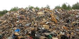 Makabryczne odkrycie na wysypisku śmieci. Dziecko miało związane ręce i nogi