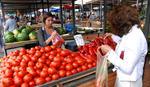 Nema više paradajza SA UKUSOM PARADAJZA, a razlog će vas iznervirati