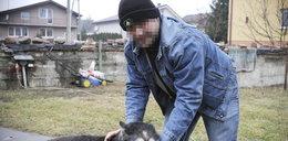 Pomogłem pogryzionej przez psy i teraz mam problemy!
