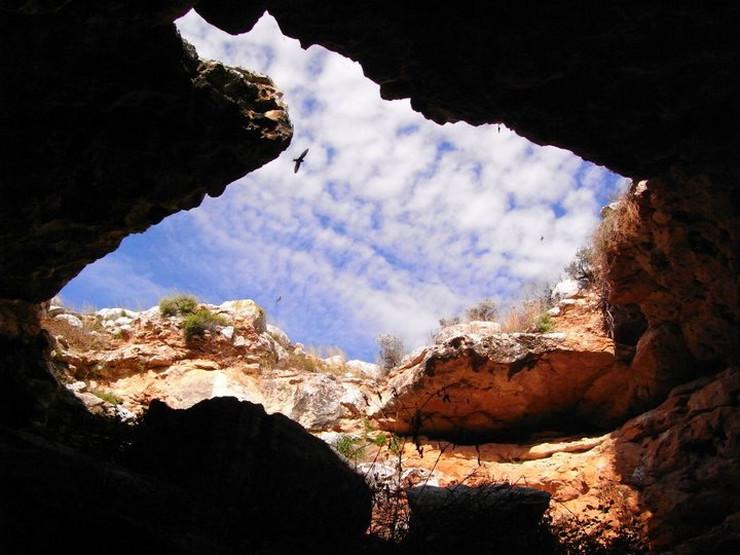 pecine02 foto Wikipedia Jennyiam1