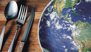 Problem marnowania żywności wymaga kompleksowych regulacji