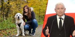 Piątka dla zwierząt to koszty dla właścicieli psów!