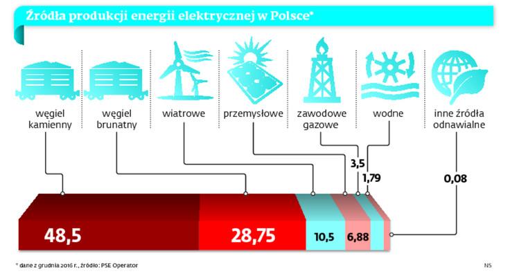 Źródła produkcji energii elektrycznej w Polsce