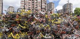 Zebrali porzucone rowery. Trudno uwierzyć, że było ich aż tyle!