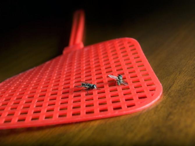 Za ubijanje muva