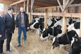 Nedeljko Bojkic farmer Lopare