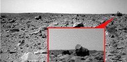 Małpy są na Marsie?