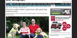 Niewidomi się zaręczyli, bo... pokochały się ich psy
