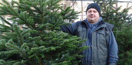 Gdzie i jaką choinkę kupimy w Lublinie na święta?