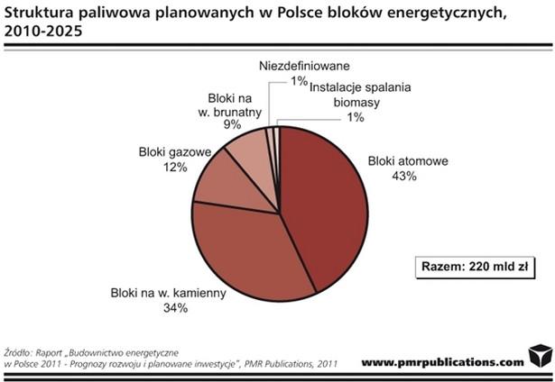 Struktura paliwowa bloków energetycznych planowanych w Polsce
