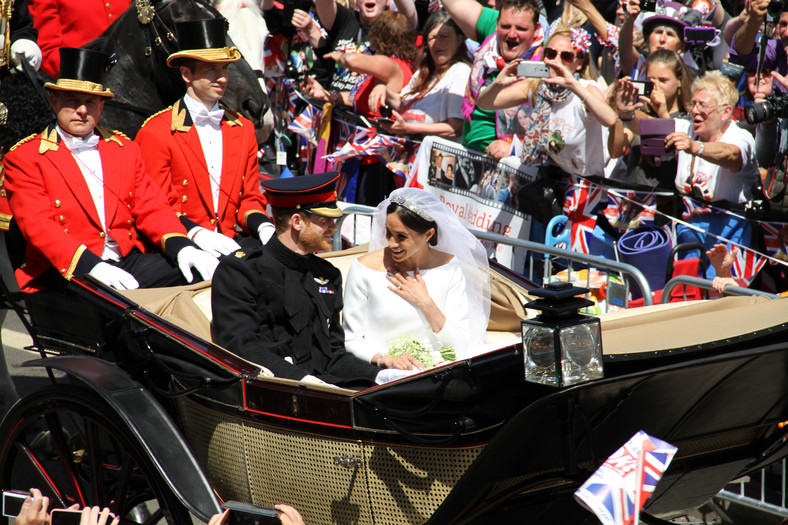 The princely couple of Sussex on their wedding day