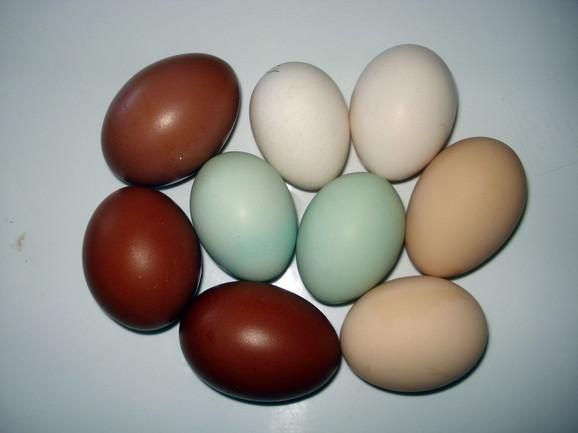 Obojena jaja