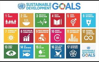 Bank Pekao aktywnie wspiera Cele Zrównoważonego Rozwoju ONZ