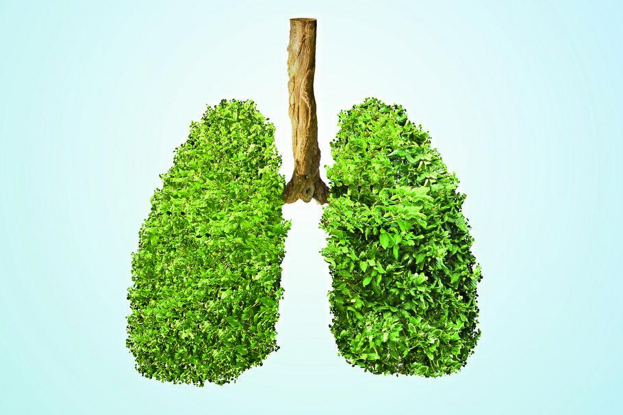Czyste oddychanie