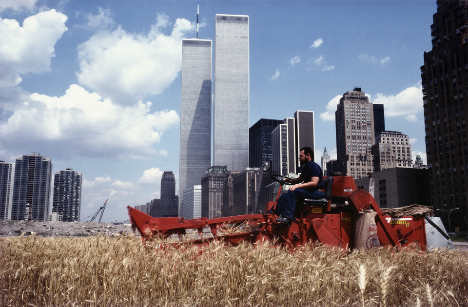 """Wiek półcienia. Sztuka w czasach planetarnej zmiany"" w Muzeum Sztuki Nowoczesnej w Warszawie. Na zdjęciu: Agnes Denes, ""Wheatfield - A Confrontation: Battery Park Landfill, Downtown Manhattan - The Harvest"" (1982)"