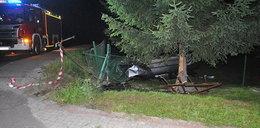 Po pijanemu i bez prawa jazdy dachował BMW w ogródku