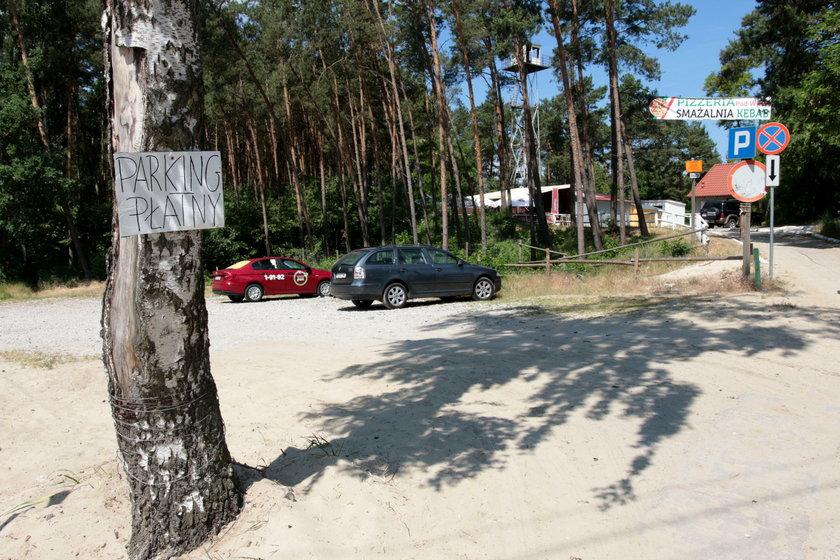 Parkin w Jantarze