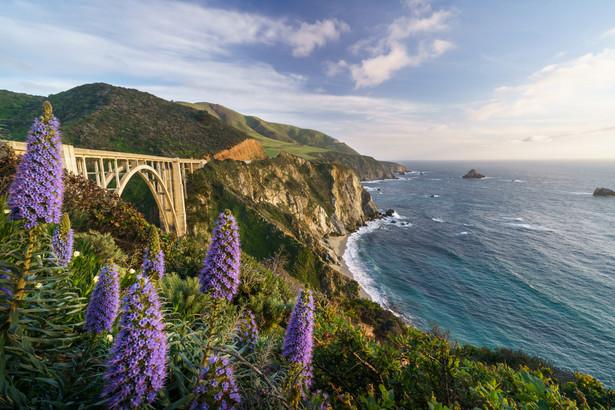 """Big Sur Kierując się z Los Angeles na północ wybierzcie drogę nr 1, którą wielu uznaje za najpiękniejszą trasę w Stanach Zjednoczonych. Ciągnie się ona bowiem wzdłuż wybrzeża oblewanego przez Pacyfik i oferuje nam widoki na wyjątkowe plaże poprzecinane skalistymi klifami. Punktem kulminacyjnym podczas podróżowania """"jedynką"""" jest region Big Sur z charakterystycznym mostem Bixby Creek (na zdjęciu). Uwaga! Podróżując trasą nr 1 należy upewnić się, czy jest ona przejezdna. Ze względu na lawiny błotne i osunięcia terenu, bardzo często fragmenty drogi są wyłączane z ruchu samochodowego. Zawsze możliwe jest jednak ominięcie zamkniętego fragmentu trasy i powrót na """"jedynkę"""" w innym miejscu."""