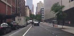 Pędzący koń w centrum Nowego Jorku