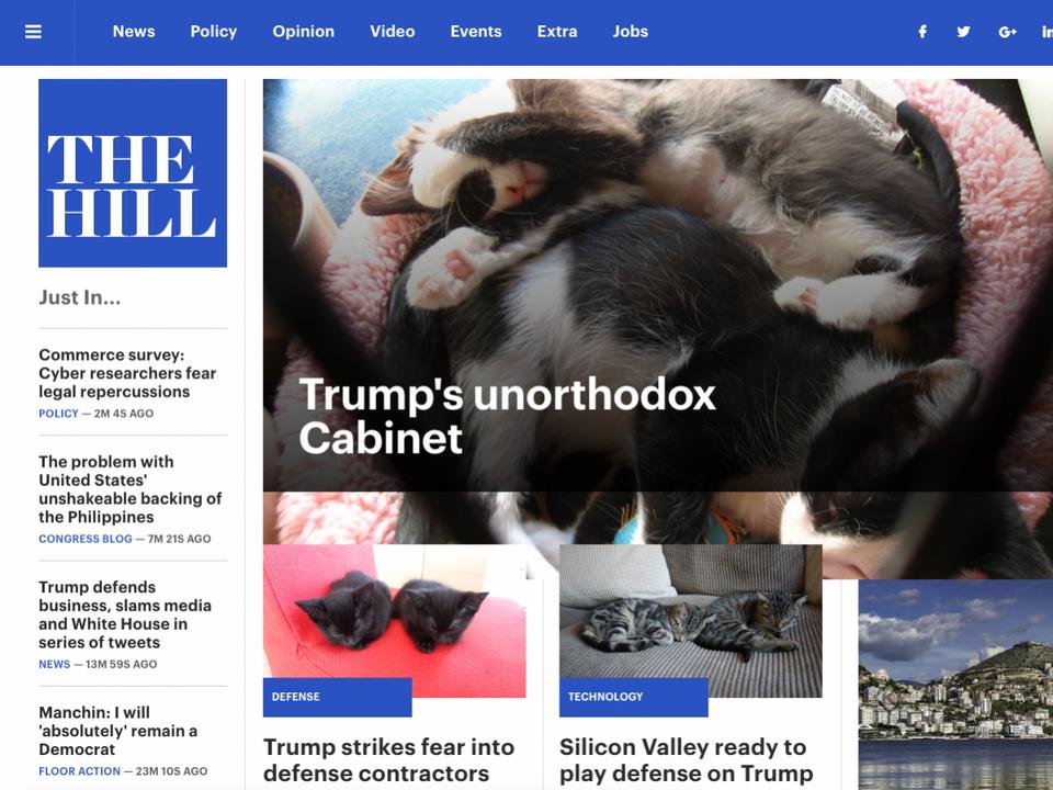 The Hill: Nieortodoksyjny gabinet Trumpa