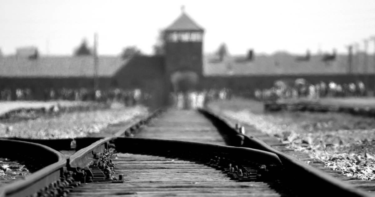 Schock-Umfrage: 63 Prozent der US-Millennials haben keine Ahnung vom Holocaust