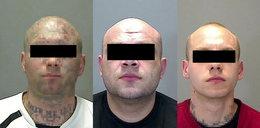 Siali postrach w Anglii. Polski gang za kratami