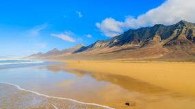 Fuerteventura. Wśród kwiatów hibiskusa i aloesu