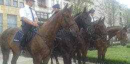 Policjanci świętowali z poznaniakami. FILM