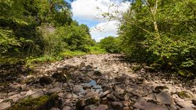 W Meksyku zniknęły dwie rzeki. To już kolejny taki przypadek