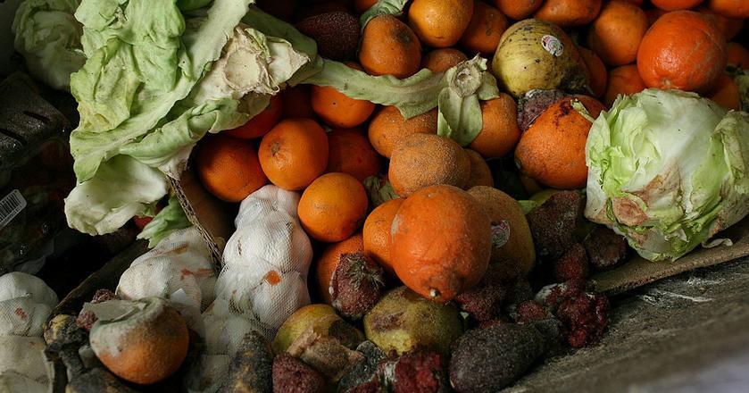 Warzywa i owoce są w czołówce produktów, które Polacy wyrzucają do kosza
