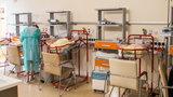 Kraków będzie finansował in vitro? Rocznie może urodzić się nawet 150 dzieci