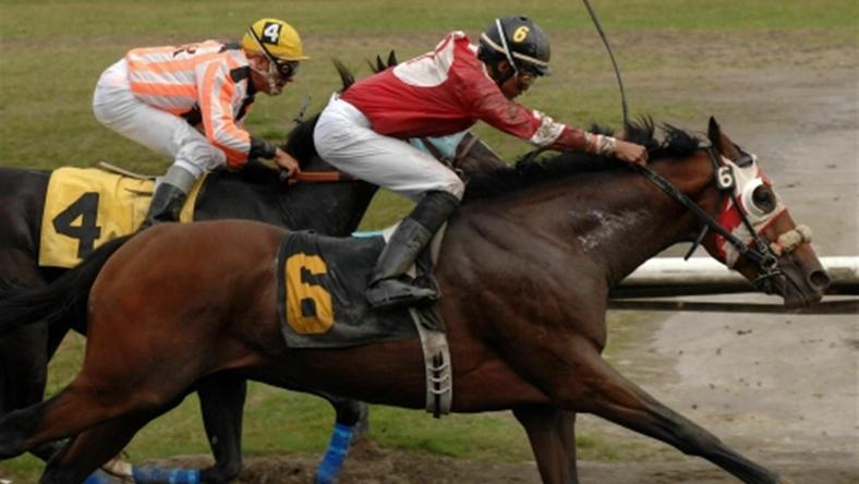 Kanadyjczycy uczczą 250 lat wyścigów konnych