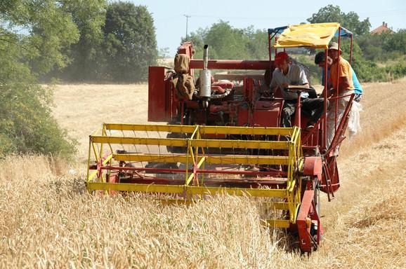 Trgovinske tenzije mogu imati pozitivan efekat na poljoprivredu