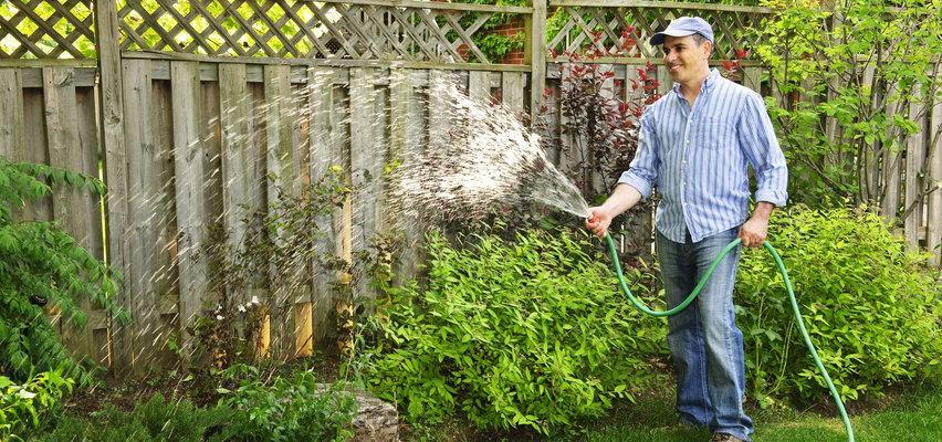 Lipiec w ogrodzie - kalendarz ogrodnika. Sprawdź, co trzeba zrobić