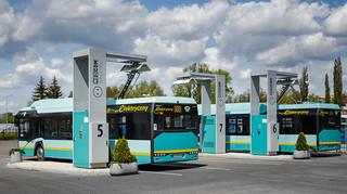 Samorządy napędzają elektromobilność