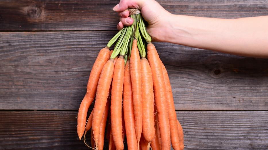 sárgarépa és merevedés férfi hormonok