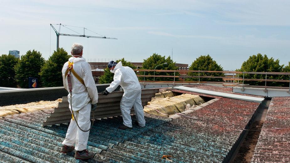 Usuwanie pokrycia dachowego zawierającego azbest - Lucaz80/stock.adobe.com