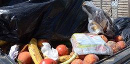 Jedzenie na śmietniku