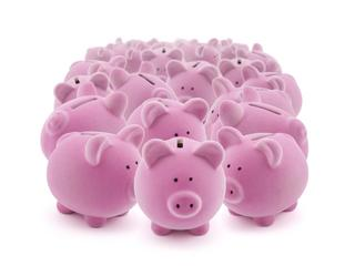 17889048 - large group of pink piggy banks