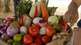 Turystyczna Jazda - smaki egzotycznej wyspy Koh Samui