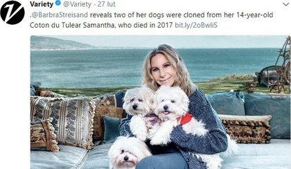 Streisand zdecydowała się na klonowanie. Zrobiła to z genami Samanthy