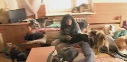 Znana artystka jak Violetta Villas. Mieszka z 70 psami w tragicznych warunkach [FILM]