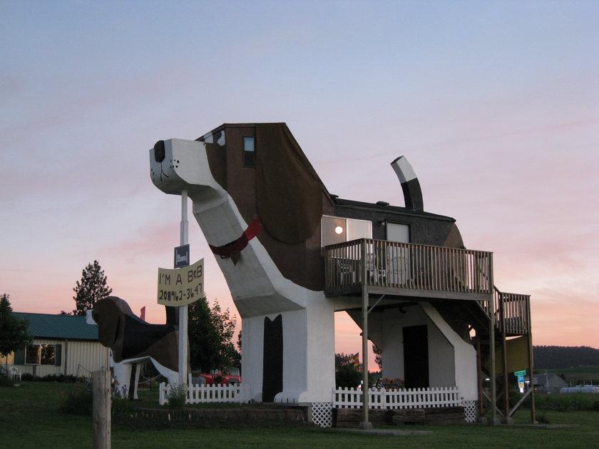 Najdziwniejsze hotele na świecie - Dog Bark Park Inn