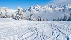 Trzech mężczyzn zjechało samochodem ze stoku narciarskiego w Czarnorzekach